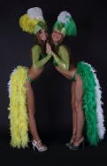 Бразильский костюм с перьями